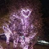 世の中宴会自粛ムード、 今年のクリスマス・忘年会は、・・・!?
